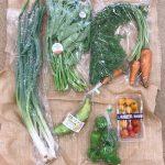 お買い得野菜セット