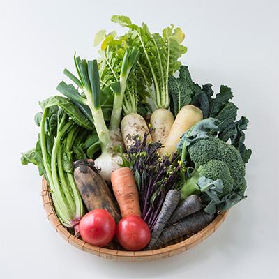 yaotomi 野菜