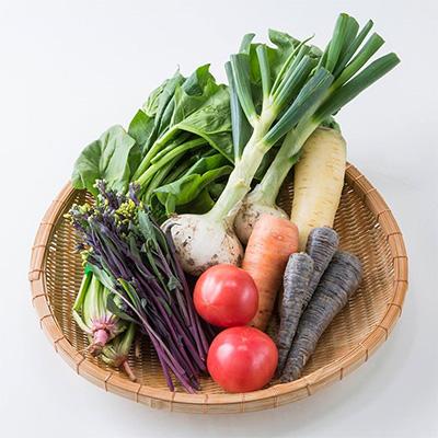 yaotomi 野菜セット 宅配野菜